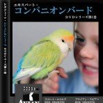 Expert Companion Bird Care Series Vol 1 (Japanese)