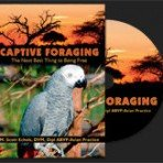 Captive Foraging DVD