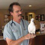 Dr Brian Speer